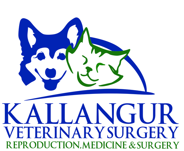 Kallangur Veterinary Surgery